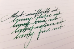 Kaweco - Palm Green