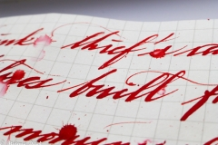 KWZ Ink- Thief's Red