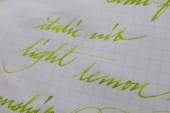 Lamy charged green