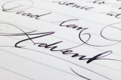 Robert Osters Signature - Barossa Grape